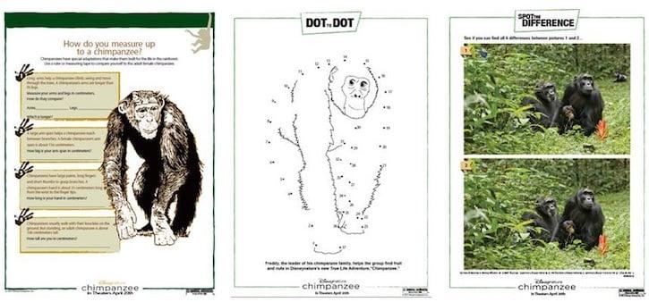 chimpanzee-activity-book