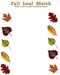 Fall Leaf Printable Activity Sheet – Leaf Match