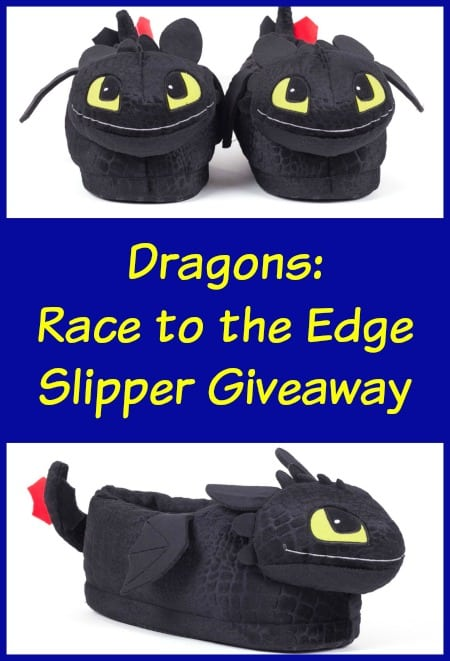 Dragons-  Race to the Edge Slipper Giveaway
