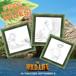 The Wild Life Printable Activity Sheets