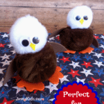 This kids Patriotic Eagle Craft is a fun project to celebrate 4th of July or any patriotic holiday!
