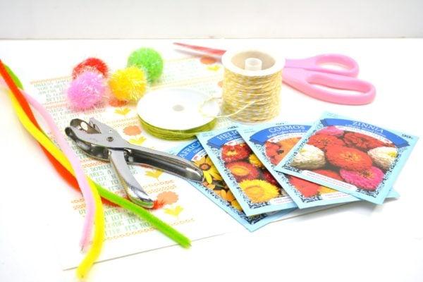 Lorax Truffula Tree Seed Earth Day Craft Supplies