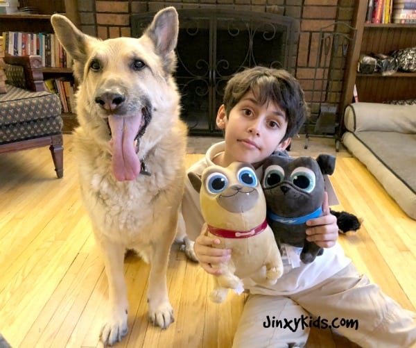 a880f8714afc Is your dog your pal? Ours sure is and now we have a whole bunch more  doggie friends with all of the Puppy Dog Pals! Last night we planned a fun  Puppy ...
