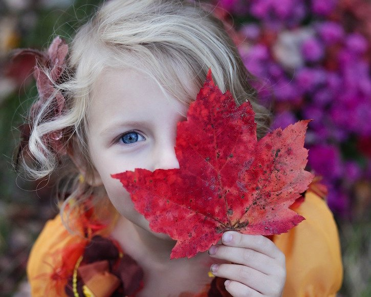 child fall leaf